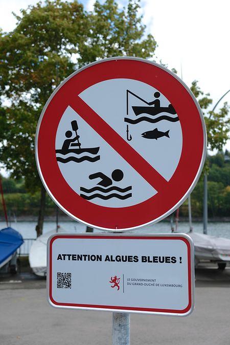 Bereits im Vorjahr herrschte am Stausee wegen Blaualgen ein Badeverbot.