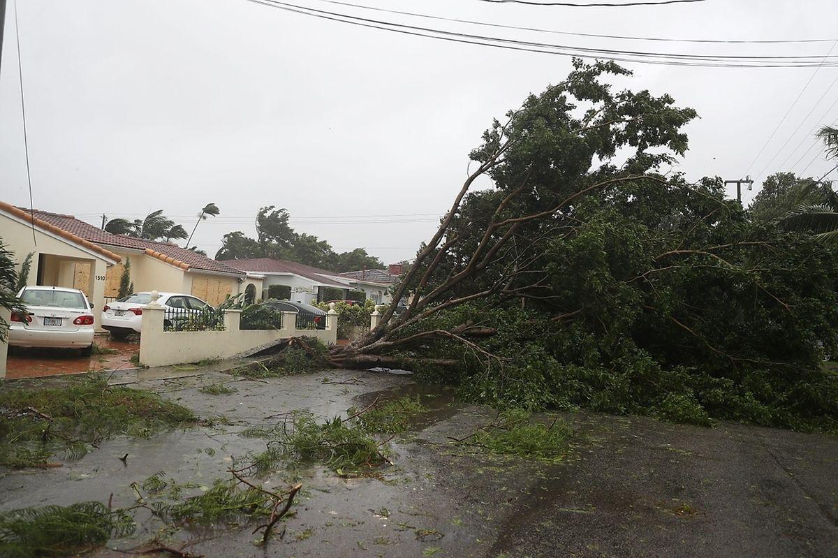 Experten schätzen, dass in Florida über eine Million Menschen ohne Strom sein könnten.