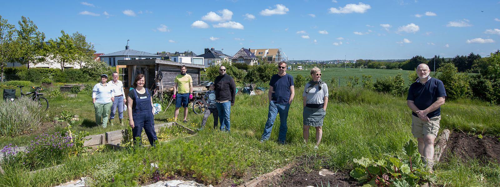 Seit 2013 gibt es den Gemeinschaftsgarten auf Kaltreis in Bonneweg. Bis zu 20 Einwohner des Stadtviertels gärtnern hier mindestens einmal die Woche.