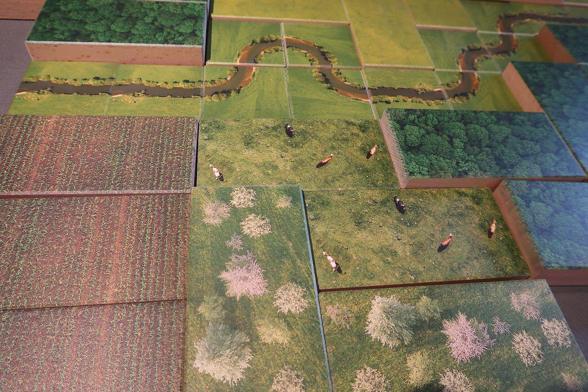 Mit diesem Puzzle – wie die gesamte Ausstellung auf Holzplatten – können sich Besucher ihre Wunschlandschaft zusammenbasteln.