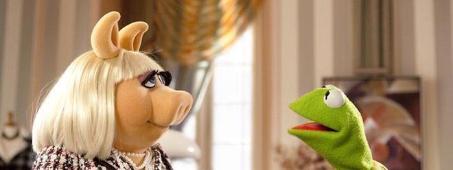 Nach jahrelanger Funkstille finden Kermit (r.) und Miss Piggy (l.) wieder zusammen. Gemeinsam wollen sie die Muppets Show wieder zum Leben erwecken ...