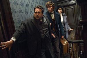 Ao virar da esquina pode haver mais um filme do universo Harry Potter.