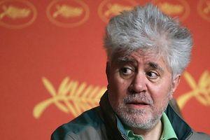 Der Regisseur Pedro Almodovar und die gesamte Cannes-Jury urteilt über die herausstechenden Filme des vergangenen Jahres.