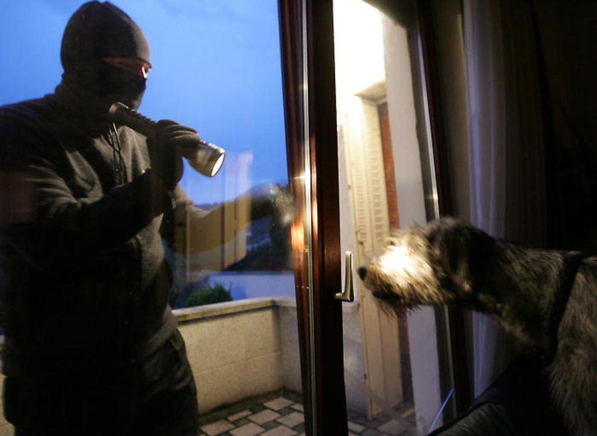 Entre le 1er octobre et le 2 novembre 2014, pas moins de 436 cambriolages ou tentatives ont été enregistrés par la Police.