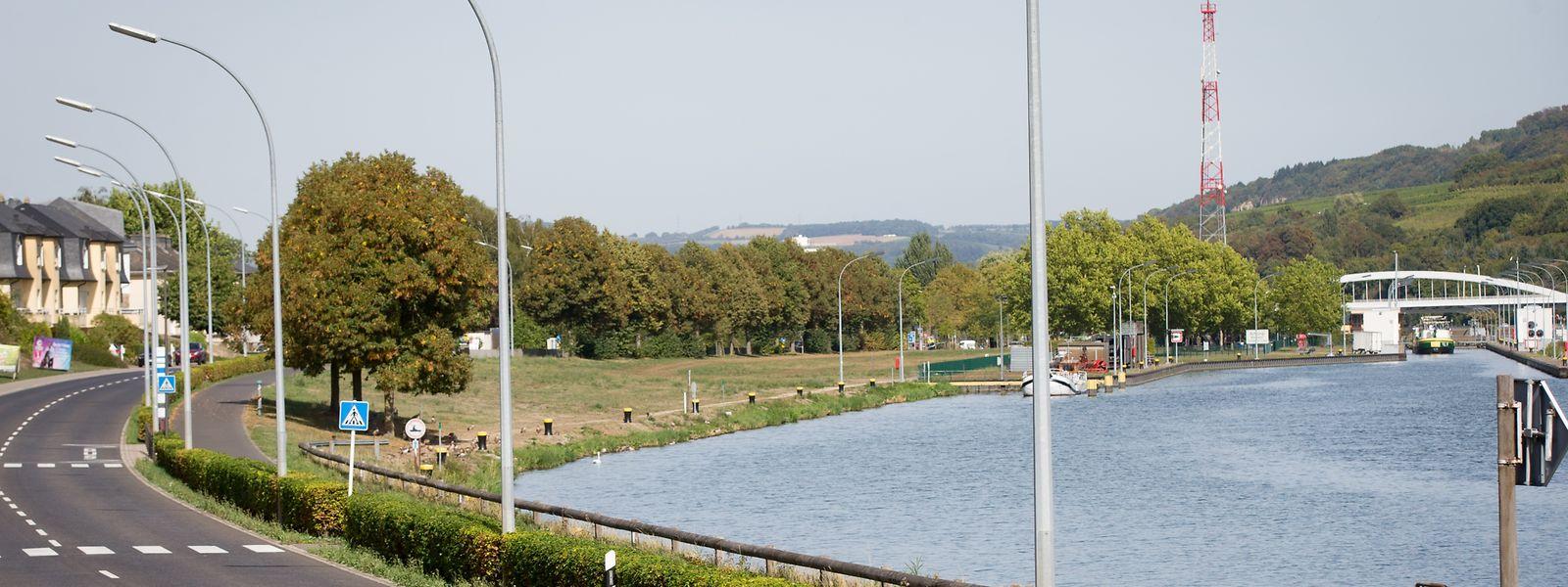 Parkplätze, ein Hubschrauberlandeplatz und ein 100 Ar großer Solarpark entstehen von Oktober an auf der Schleusenwiese, direkt am Moselufer.