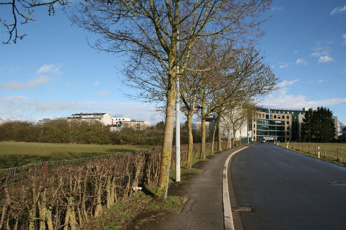 Vue depuis la rue Verte. Le nouveau quartier doit se développer sur le côté gauche de la rue quand on vient de Cessange pour aller vers Gasperich.