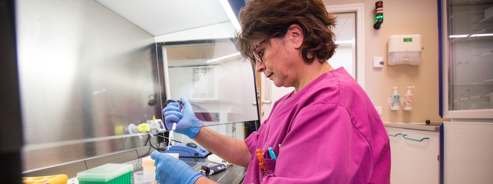 Cette année, le Laboratoire national de procréation médicalement assistée devrait réaliser plus de 700 fécondations in vitro.