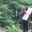 Das Holz von zerstörten Brücken und Treppen musste aus dem Wald entfernt werden.