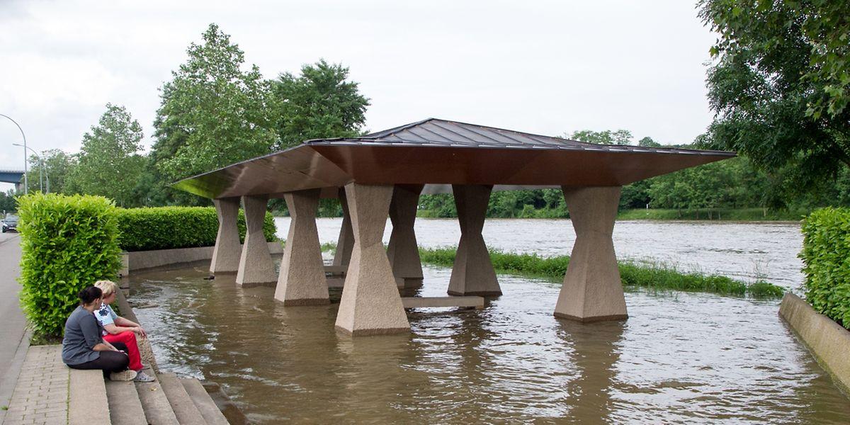 Die Mosel führt derzeit mehr Wasser als üblich.
