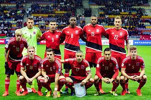 From L second row: Luxembourg's Vincent Thill, goalkeeper Anthony Moris, Daniel Da Mota,  Christopher Martins, Ricardo Delgado, Aurelien Joachim first row: Laurent Jans, Chris Philipps, Mario Mutsch, Dirk Carlson and Florian Bohnert pose for a group picture ahead of the WC 2018 football qualification match between Belarus and Luxembourg in Borisov, outside Minsk, on October 10, 2016.  / AFP PHOTO / MAXIM MALINOVSKY