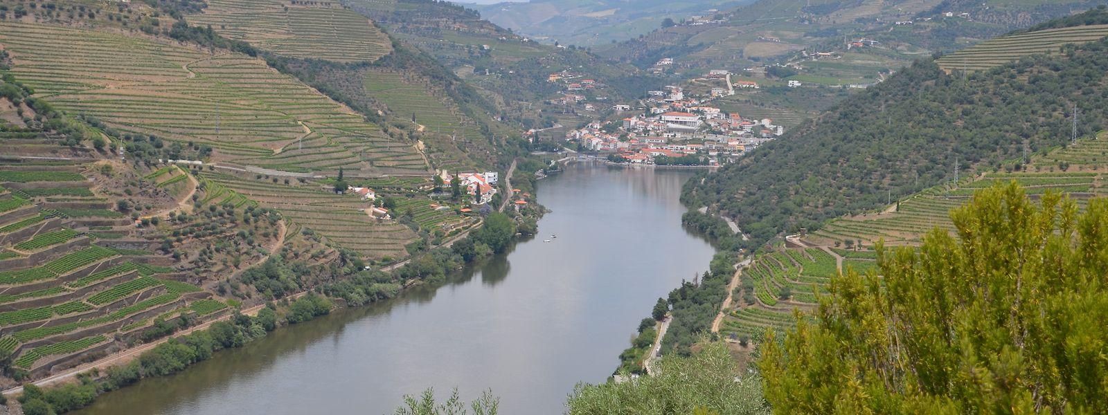 Der wohl schönste Ausblick auf das Tal des Portweins bot sich nach einem Besuch der Quinta do Seixo.