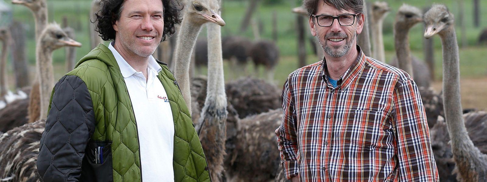 Robert Axmann mit Marcel Wildgen (rechts) auf dessen Straußenfarm in Filsdorf.