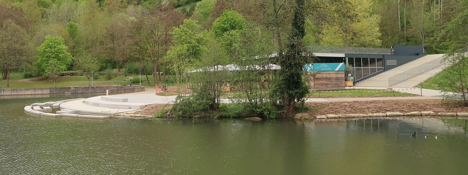 Neben den Stufen zum Sitzen und Balancieren will die Gemeinde Schilf als Barriere für Nilgänse anpflanzen.