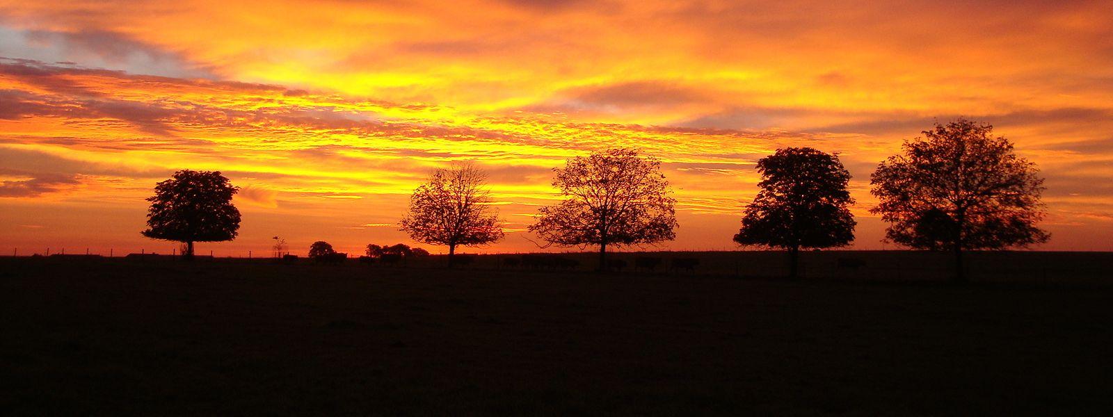 Die Morgensonne über Medernach.