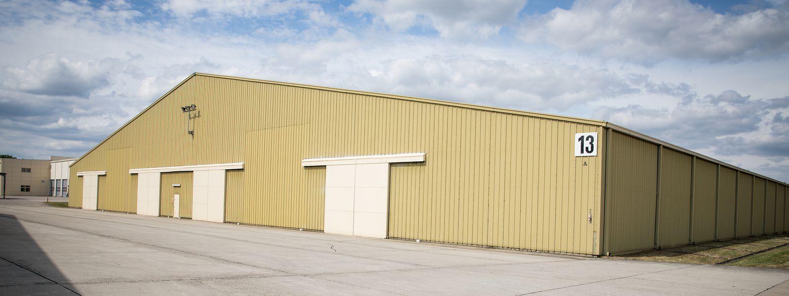 WSA emploie 181 salariés. Son site de 38 hectares à Sanem comprend 17 hangars, la plupart occupés par l'USAFE.