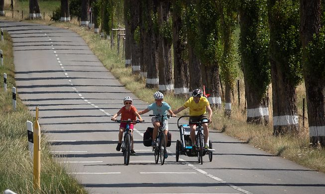 Velosummer sees 113km of roads given over to cyclists in 12 routes available until 29 August