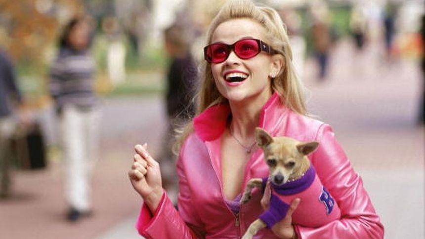"""In dem Film """"Natürlich blond"""" spielt Reese Witherspoon eine Jura-Studentin, die sich mehr für Mode als Gesetze interessiert."""