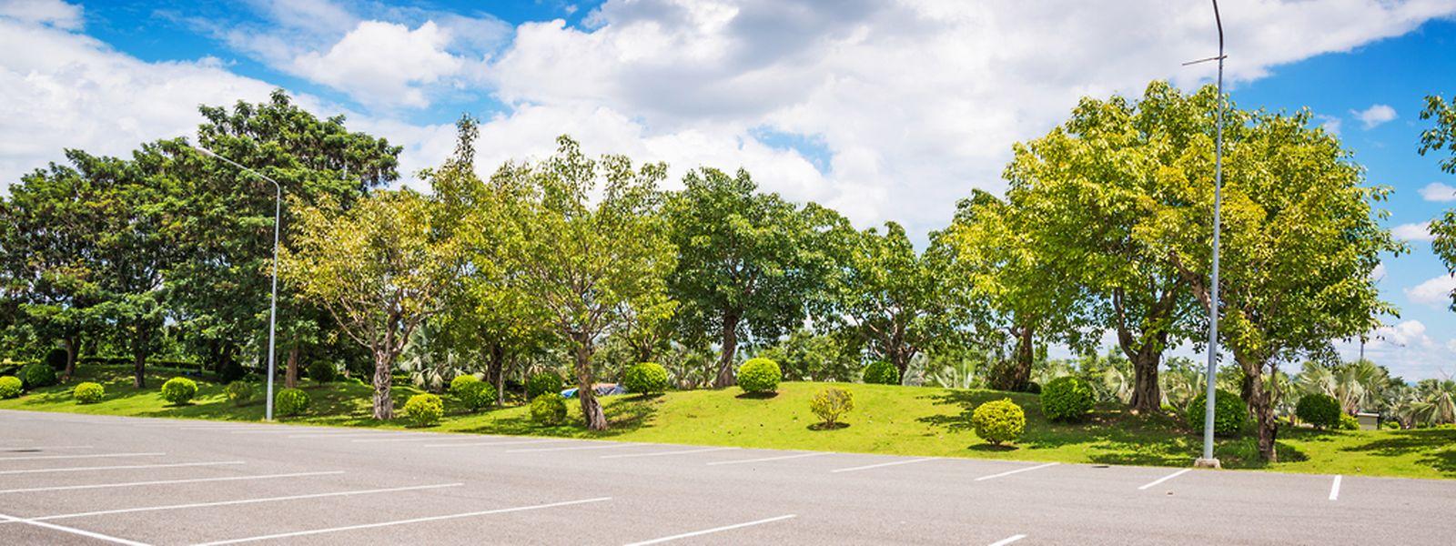 Idealbild der Kampagne: leere Parkplätze und leere Straßen.⋌(FOTO: SHUTTERSTOCK)