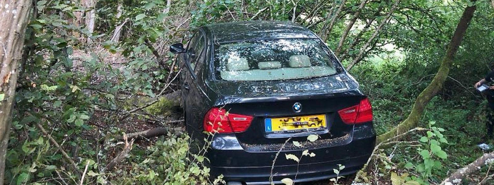 Der Wagen landete inmitten von Bäumen.