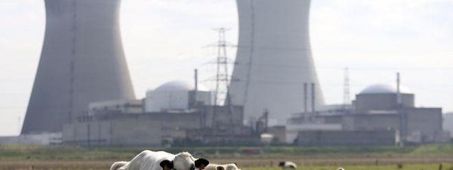 Das Atomkraftwerk im belgischen Tihange steht wegen Sicherheitsmängeln immer wieder in der Kritik.