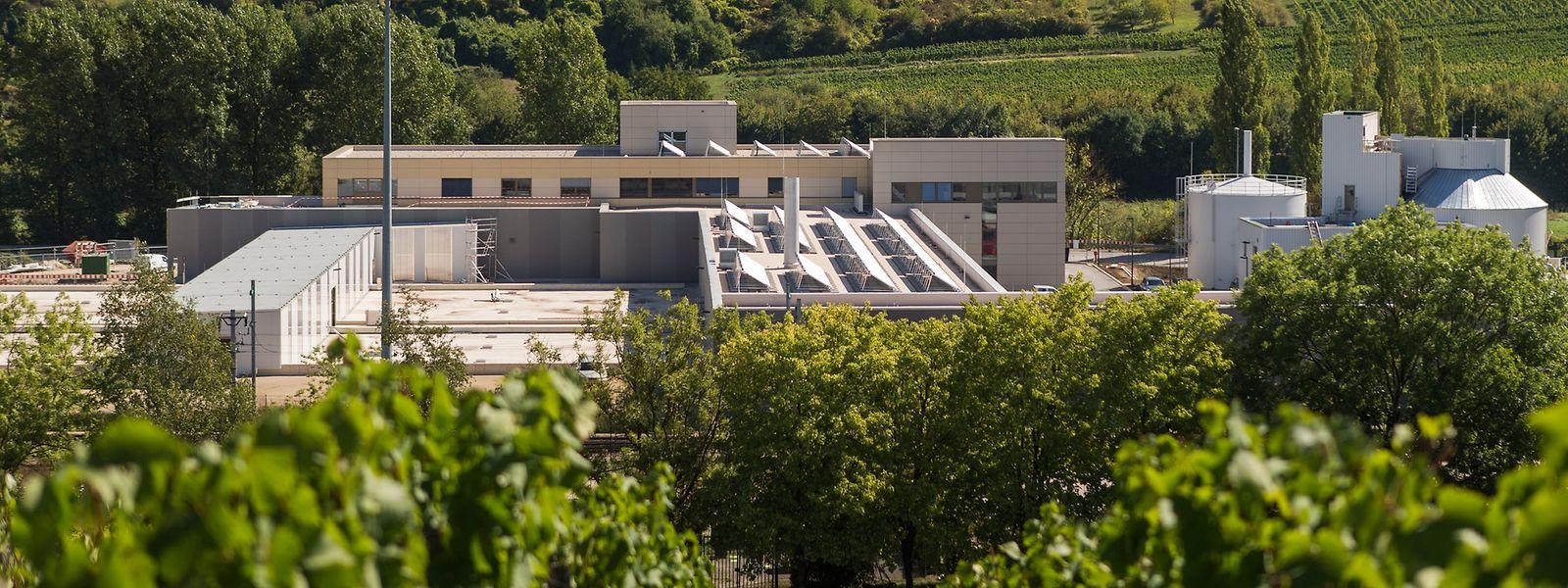 Die Anlage steht direkt an der Mosel, zwischen Tennisplatz und Tanklager.
