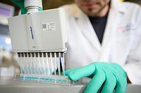 ARCHIV - 24.02.2020, Baden-Württemberg, Tübingen: Ein Mann pipettiert in einem Labor des biopharmazeutischen Unternehmens Curevac eine blaue Flüssigkeit. (zu dpa: «Nasdaq: Curevac-Börsengang für Freitag geplant») Foto: Sebastian Gollnow/dpa +++ dpa-Bildfunk +++