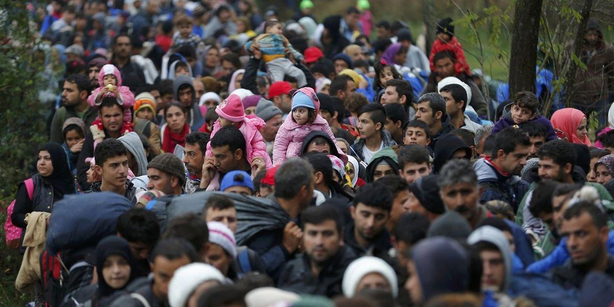 Immer noch versuchen Tausende Flüchtlinge aus Kroatien nach Ungarn zu gelangen.