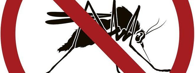 Eine flächendeckende Impfung gegen Malaria gibt es bislang nicht.