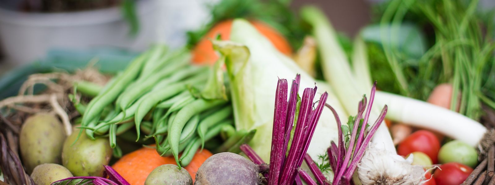 Viele verschiedene Sorten an Gemüse säht und pflanzt das Paar.