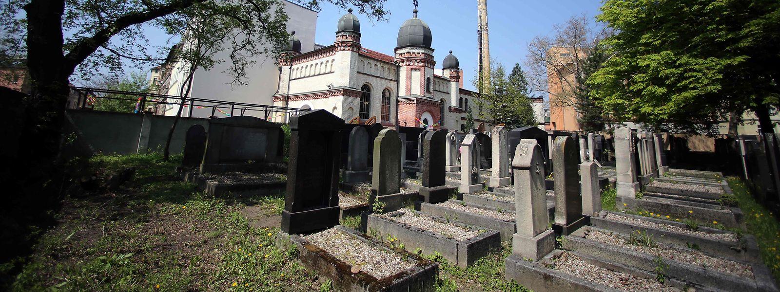 Blick auf den jüdischen Friedhof und die Synagoge in Halle an der Saale, wo sich das Drama am Mittwoch abspielte.