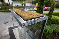 Lokales,Dudelange-Bushaltestelle mit Solar und Dachbegrünung.Foto: Gerry Huberty/Luxemburger Wort