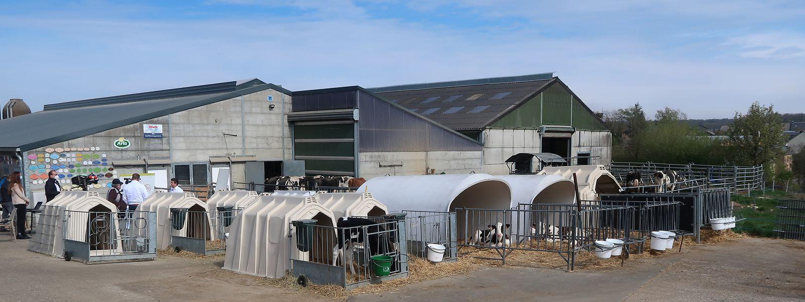 Auf diesem Bauernhof in Goebelingen präsentierte die LLJ am Freitag ihre Forderungen.
