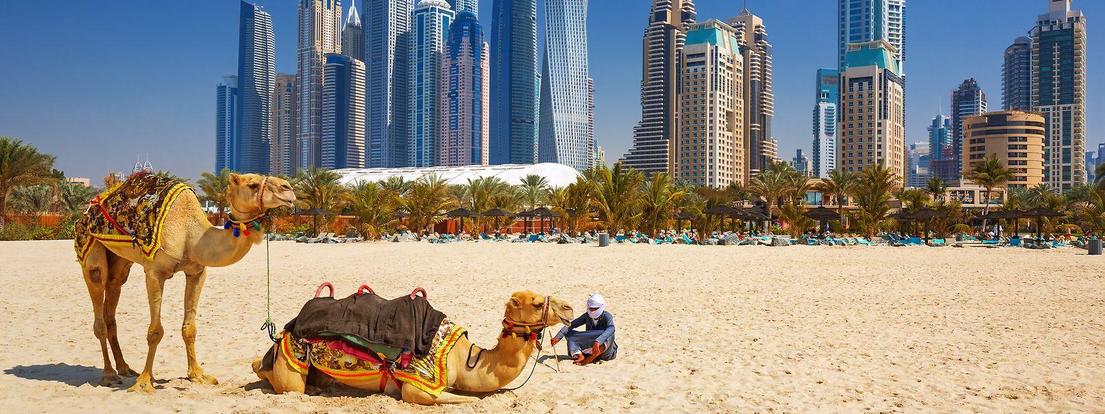 Dubai: Wo Wüste und Strand auf Großstadt trifft.