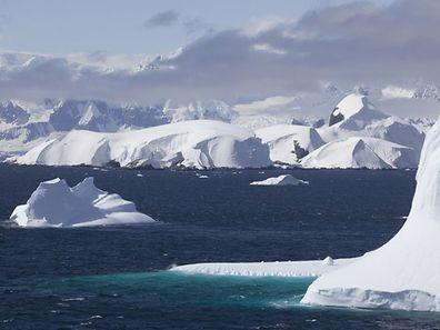 La mer de Ross est parfois surnommée «le dernier océan» car considérée comme le dernier écosystème marin intact de la planète, c'est-à-dire non touché par la pollution, la surpêche ou les espèces invasives.