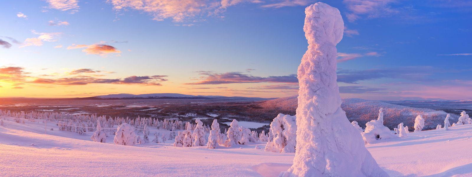 Die schier endlosen Weiten Lapplands bieten ideale Bedingungen für Skilangläufer.