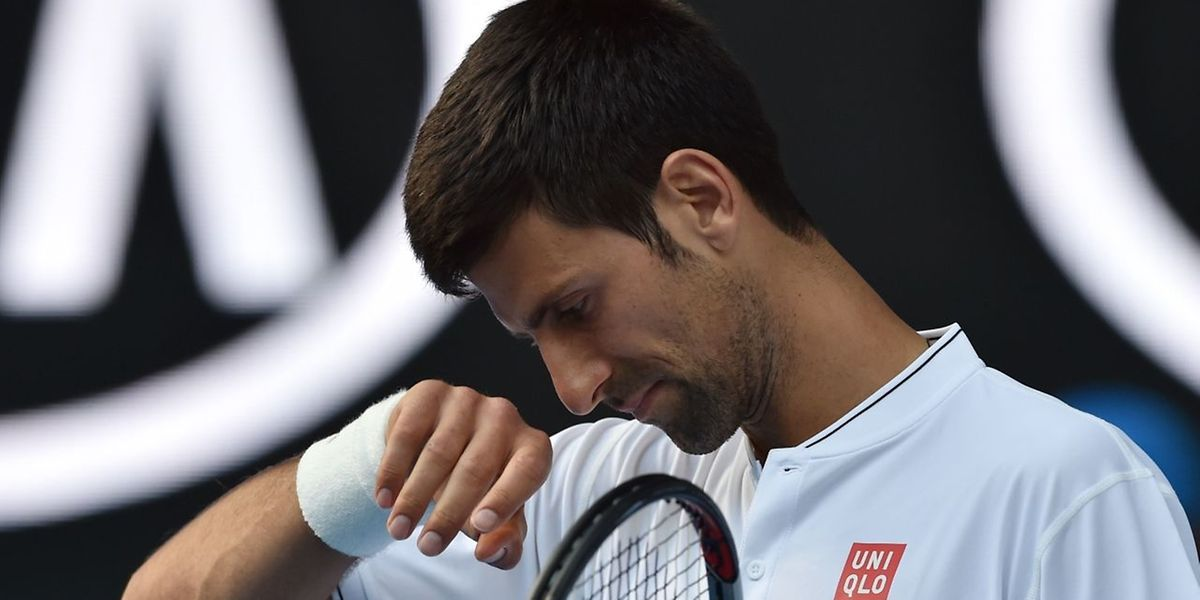 Novak Djokovic, profil bas...