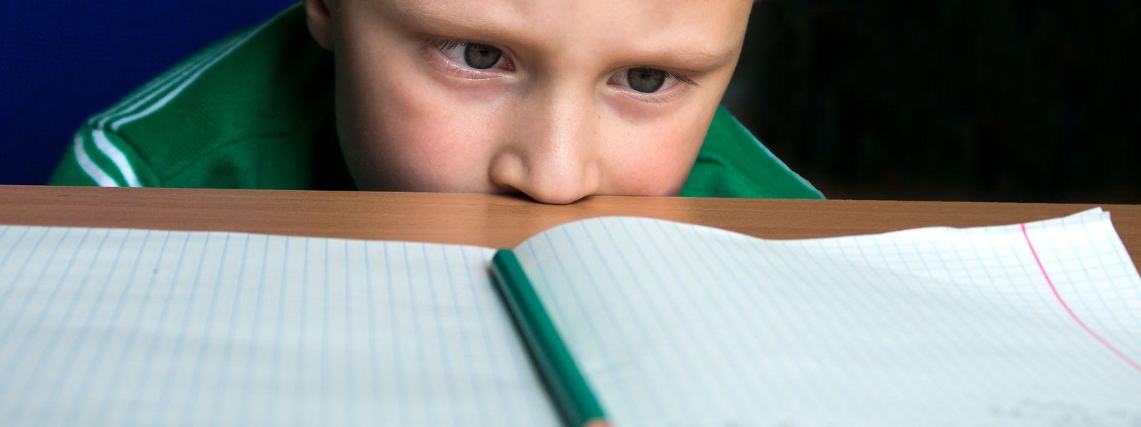 2.100 Grundschüler erhalten eine spezifische Förderung, in der Klasse oder in einer Fördergruppe.