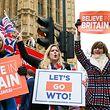 """15.01.2019, Großbritannien, London: Demonstranten halten Schilder mit der Aufschrift """"Lets Go WTO!"""" und """"Believe in Britain"""" vor dem Parlamentsgebäude in Westminster während der heutigen Abstimmung über das Brexit-Abkommen der Premierministerin. Foto: Dinendra Haria/SOPA Images via ZUMA Wire/dpa +++ dpa-Bildfunk +++"""
