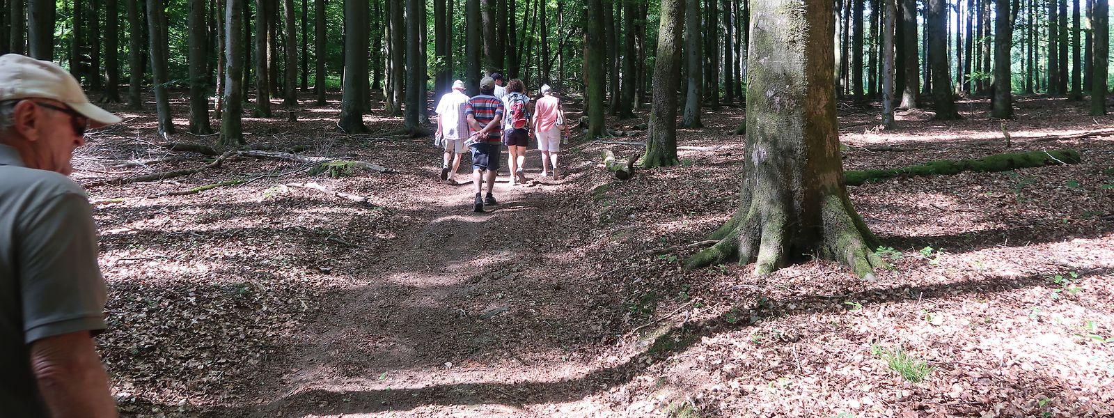 Im Wald musste man früher vor allem darauf achten, ungeschickte Schritte und somit verräterische Geräusche zu vermeiden.