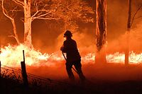 TOPSHOT - This picture taken on December 31, 2019 shows a firefighter hosing down trees and flying embers in an effort to secure nearby houses from bushfires near the town of Nowra in the Australian state of New South Wales. - Fire-ravaged Australia has launched a major operation to reach thousands of people stranded in seaside towns after deadly bushfires ripped through popular tourist areas on New Year's Eve. (Photo by SAEED KHAN / AFP)