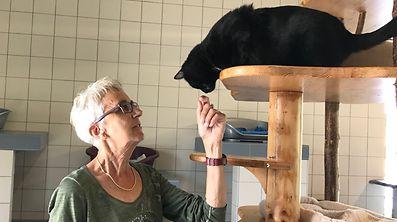 """Liliane Ferron, Sprecherin der """"Déireschutzliga"""", arbeitet seit 17 Jahren als Freiwillige im Tierasyl in Gasperich."""