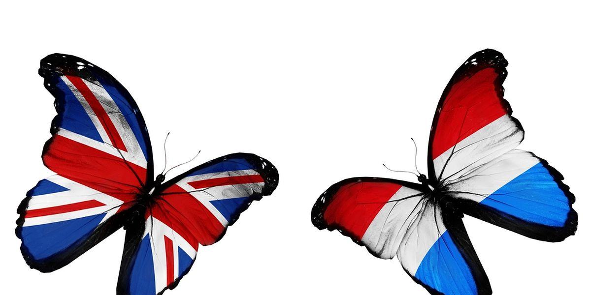 Les Britanniques qui veulent s'installer au Luxembourg ou qui y vivent ne rencontreront pas de difficulté particulière, assure le ministre des Affaires étrangères.