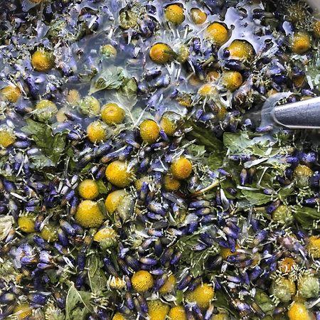 Lavender, camomile and lemon balm tea. Photo: Kate Greenwood/Botanika