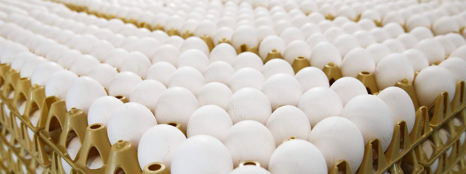 Eier von einer Farm aus den Niederlanden.
