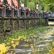 Duck Race 2019 - Luxembourg - Ville -  - 18/05/2019 - photo: claude piscitelli