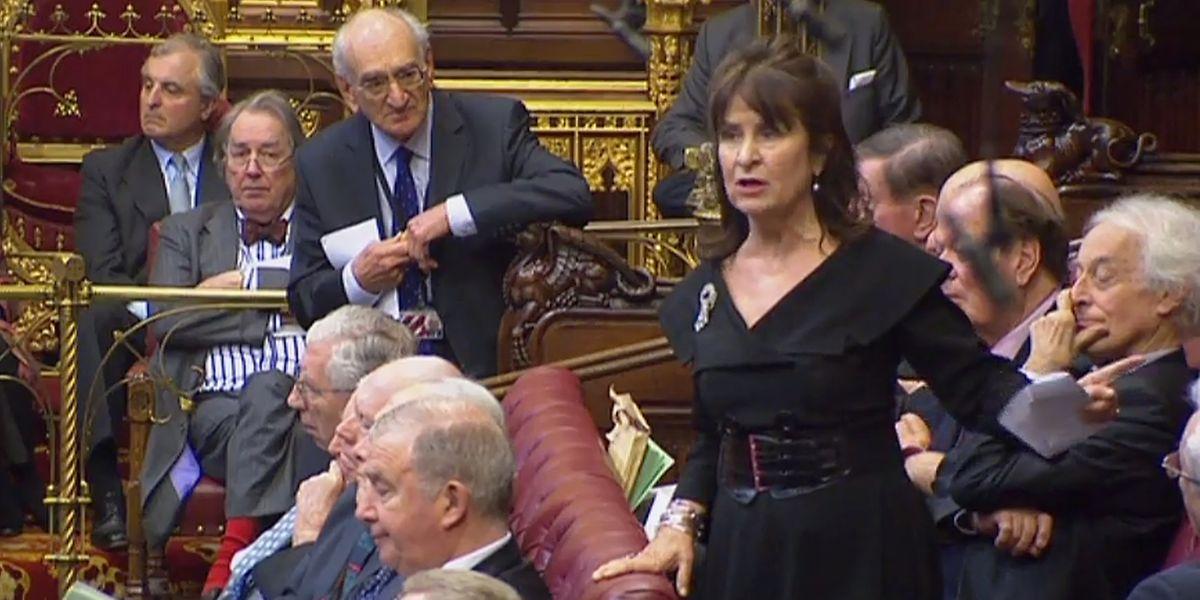 A discussão na Câmara dos Lordes
