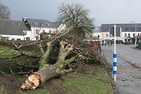 Sturm Orkan Sabine / Foto: John LAMBERTY
