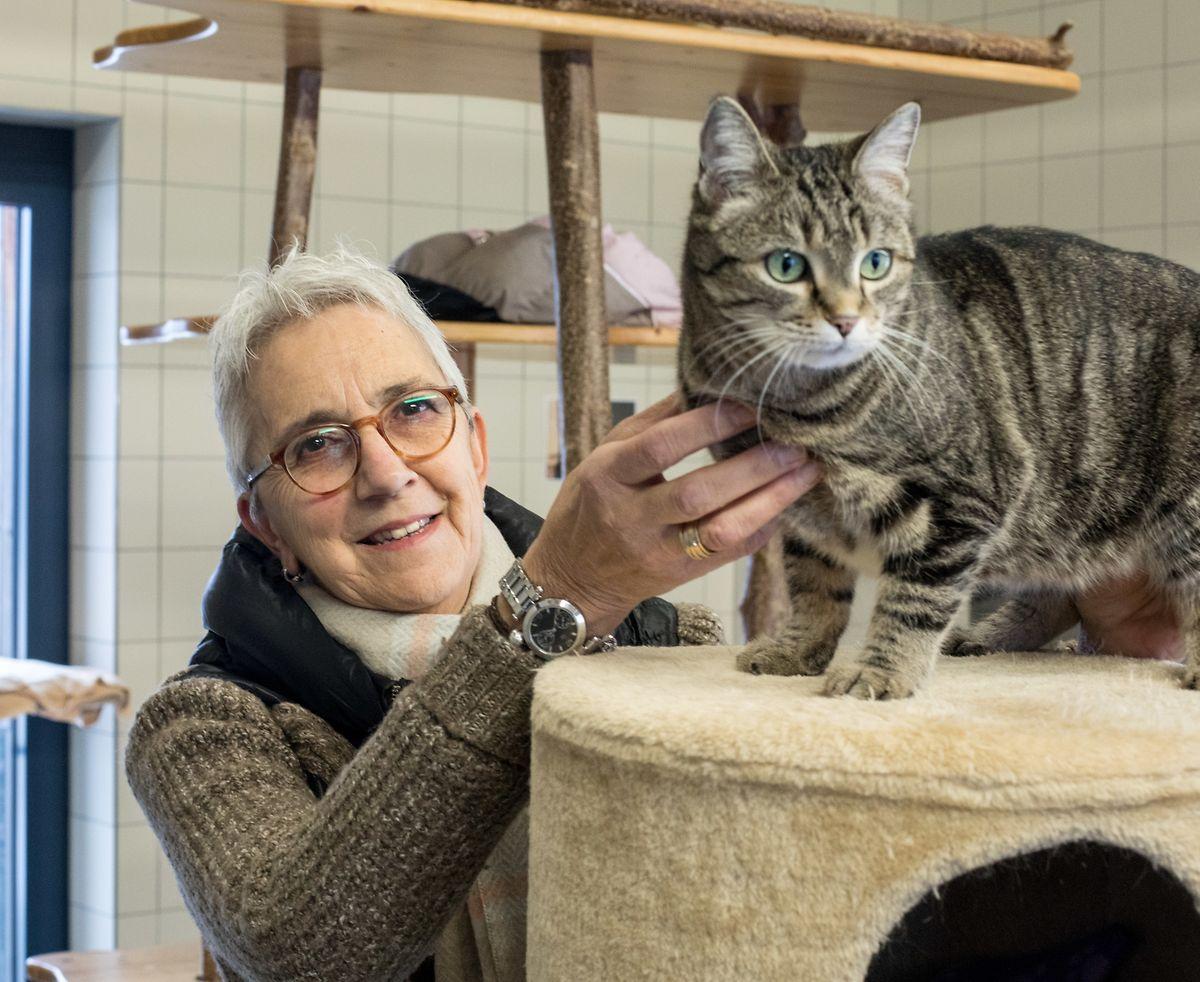 Liliane Ferron é voluntária no abrigo de Gasperich que neste momento é a casa de cerca de 40 gatos e 80 cães.