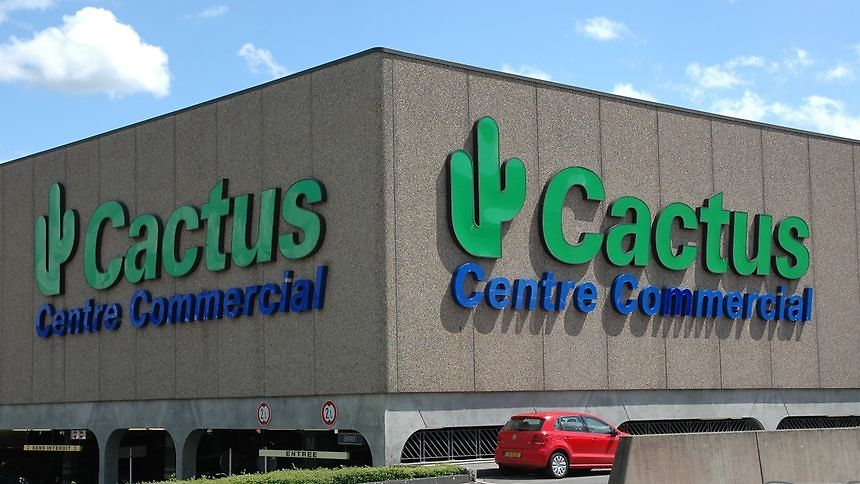 En Espagne Isabel Del Rio Rodriguez veut enregistrer «Cactus of Peace/Cactus de la Paz» comme une marque au sein de l'UE. La chaîne de supermarchés luxembourgeoise Cactus s'y oppose..