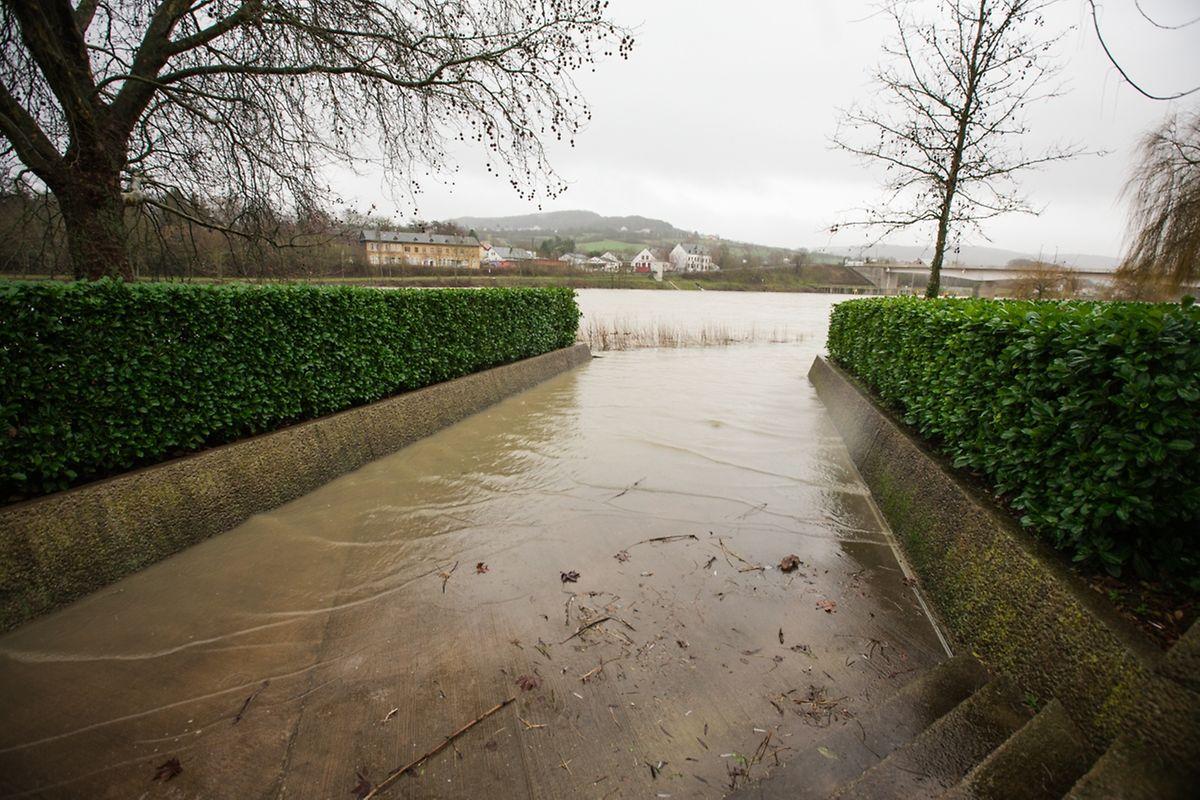 Hochwasser an der Mosel am Donnerstagmorgen.